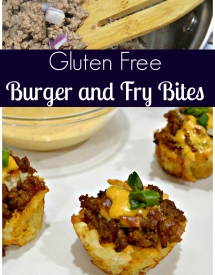 Gluten Free Burger and Fry Bites 1