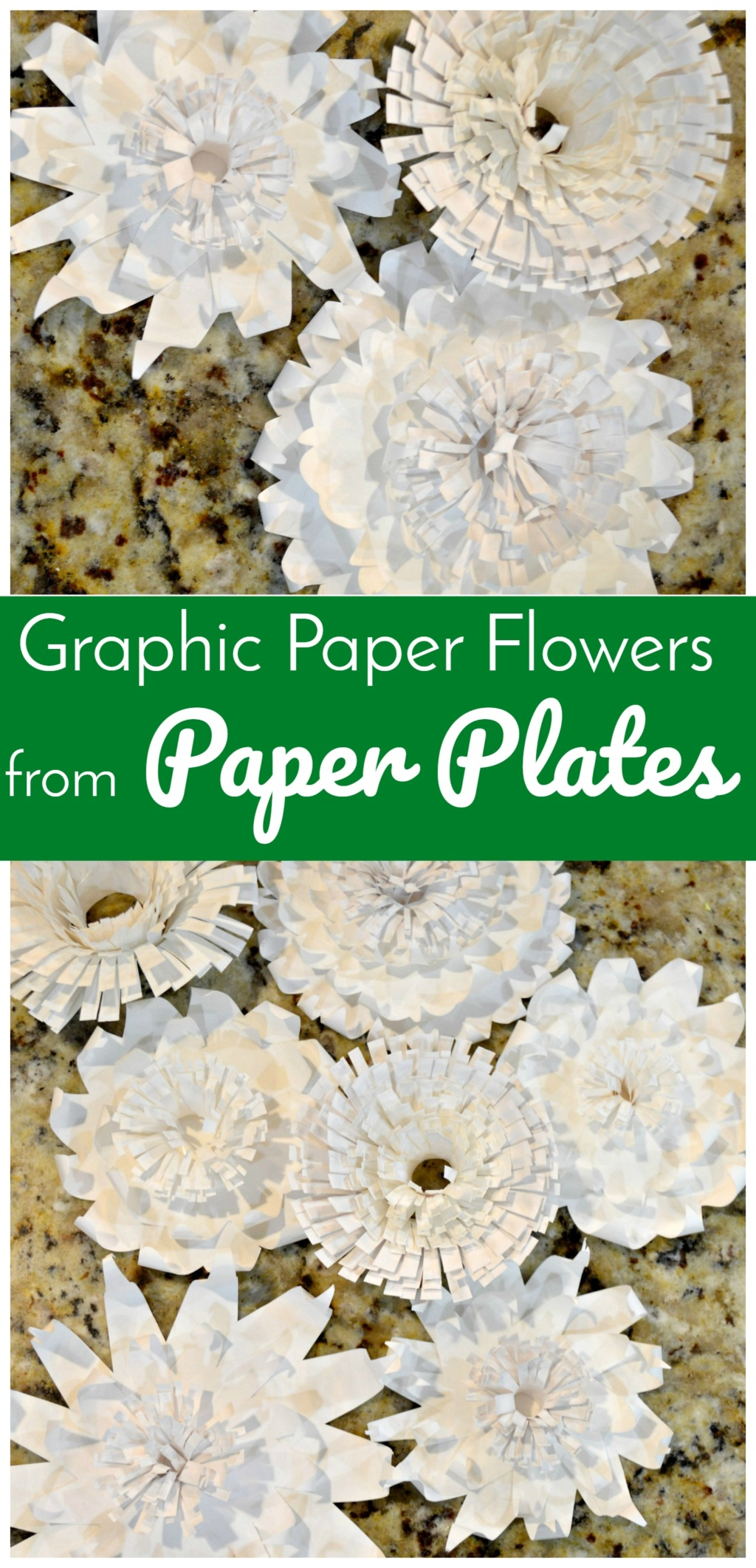 Graphic Paper Flowers From Paper Plates