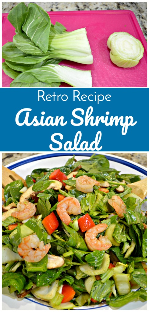 Retro Recipe Asian Inspired Salad with Shrimp