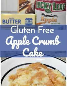 Gluten Free Apple Crumb Cake c