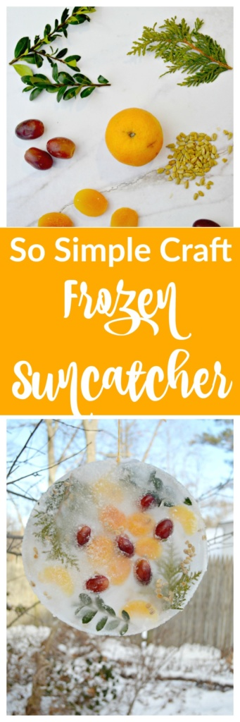 So Simple Winter Craft - Ice Suncatcher