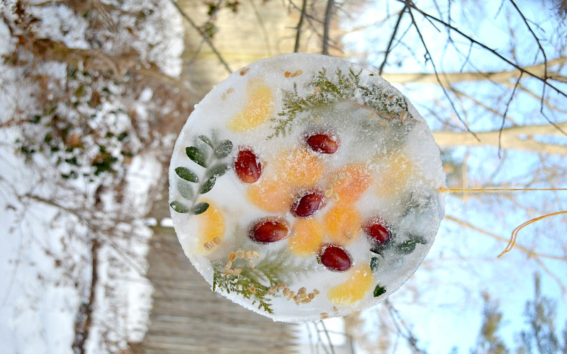 Winter Craft – Ice Sun Catcher