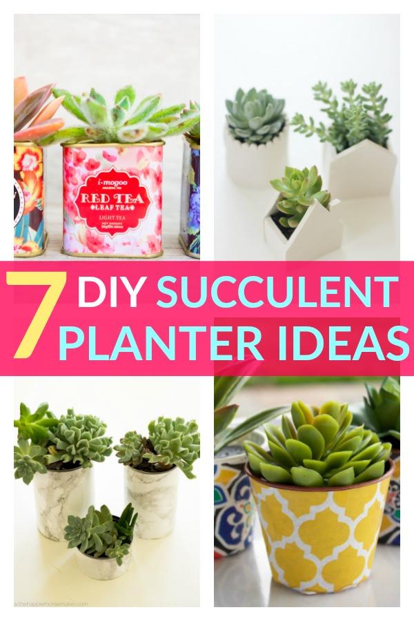 7 DIY Succulent Planter Ideas You Should Try!