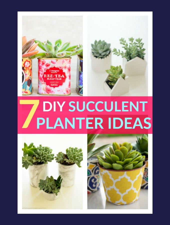 7 DIY Succulent Planter Ideas You Should Totally Try